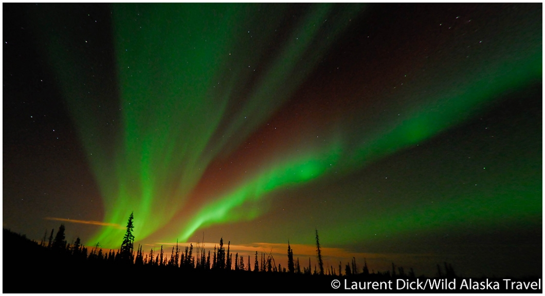 Northern Lights (Aurora Borealis) Over Fairbanks, Alaska