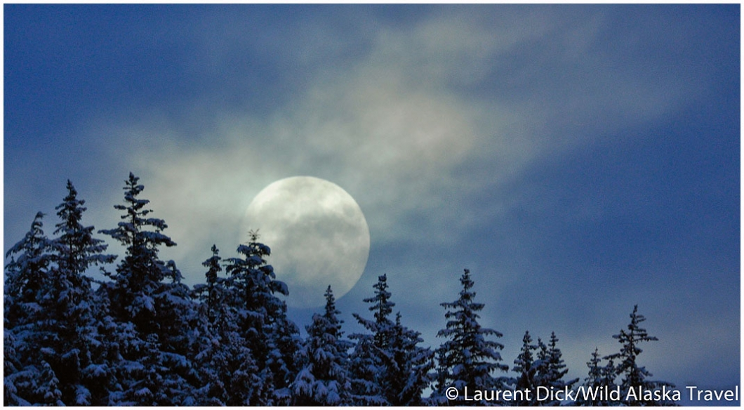 An almost full moon rises above downtown yesterday evening, dancing ...