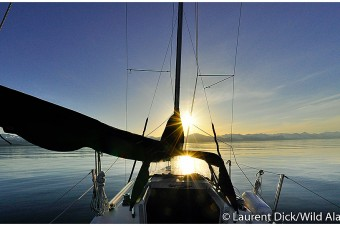 Sailing In Lynn Canal north of Juneau - (c) Laurent Dick - Wild Alaska Travel