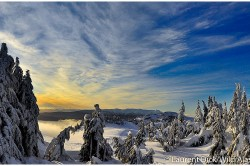 Eaglecrest Pittman Ridge Winter - Photo (c) Laurent Dick - Wild Alaska Travel