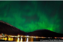 Northern Lights Over Downtown Juneau - Photo (c) Laurent Dick - Wild Alaska Travel