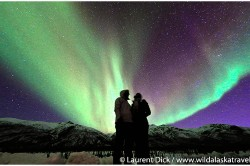Alaska Northern Lights Tours with Wild Alaska Travel - Photo (c) Laurent Dick - Wild Alaska Travel