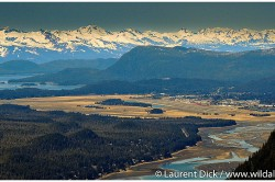 Gastineau Channel Mendenhall Wetlands Juneau Airport - Photo (c) Laurent Dick - Wild Alaska Travel