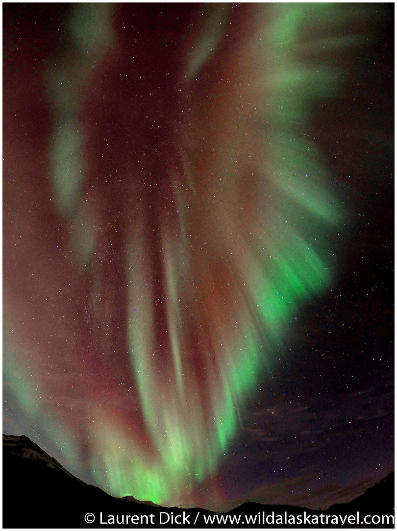 Alaska Northern Lights Tour -- Photo (c) Laurent Dick - Wild Alaska Travel