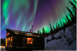 Alaska Northern Lights Tour with Wild Alaska Travel - Photo (c) Laurent Dick - All Rights Reserved