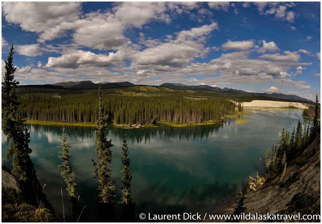 Yukon River near Whitehorse - Photo (c) Laurent Dick - Wild Alaska Travel