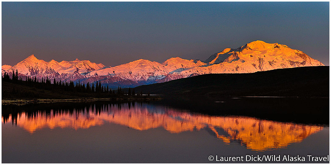 Alpenglow and Midnight Sun on Denali (Mount McKinley) from Wonder Lake - (c) Laurent Dick - Wild Alaska Travel